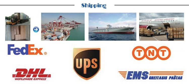 Shipping of the wholesale earphone